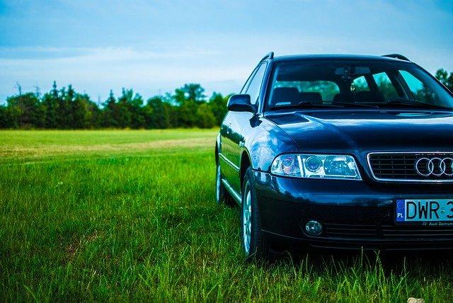 auto v přírodě