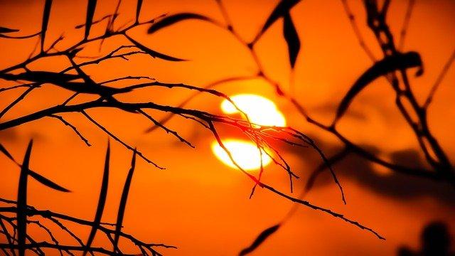 zářivé slunce